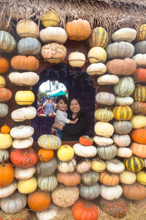 pumpkin patch (14 of 14).jpg