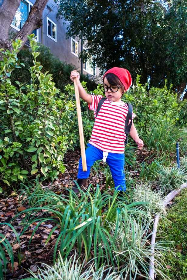 Waldo (5 of 9).jpg